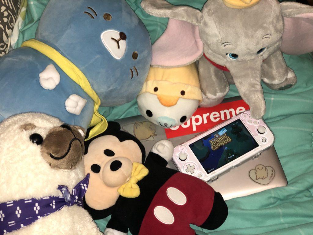 My Stuffed Animals, Nintendo Switch and Laptop